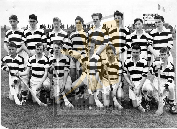 Back: Kevin Mahony, Mick Carroll, Joe O�Donnell, Eddie Keher, Sean Murray, Paddy Mahony, Tom Whyte, Dick Dowling.<br />