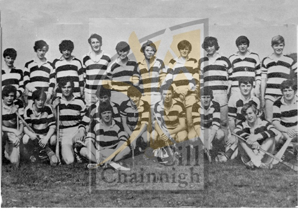 Back: Terry Brennan, Martin Gibbons, Joe Ryan, Brian O'Shee, John Power, Tony Teehan, John Dunne, Jimmy Walsh, Billy Fitzpatrick, Martin Healy. <br />