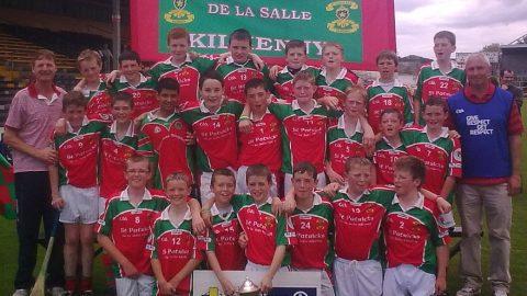 St. Patrick's De La Salle regain Educational Supplies Roinn A hurling league title