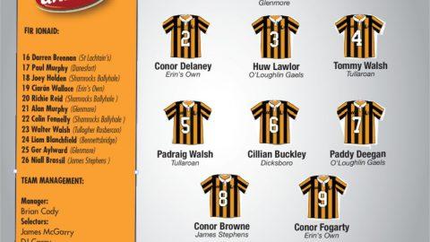 Kilkenny Team Vs Waterford
