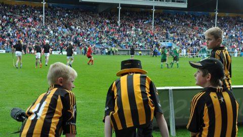 All Ireland Quarter Final 2012 – Kilkenny v Limerick