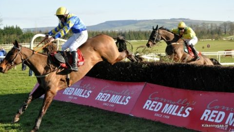 Kilkenny Race Day 2015