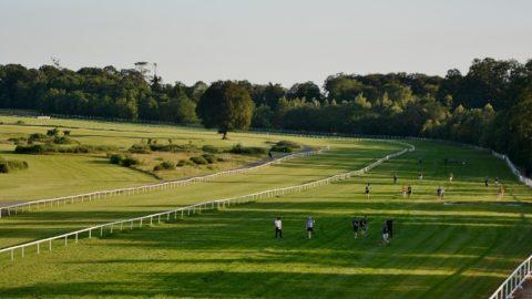 Poc Fada 2019 at Gowran Park Racecourse