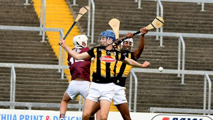 Kilkenny minor team to take on Galway named
